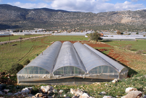 multi-span greenhouse structure