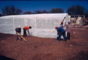 Empowering people with the use of hydroponic systems