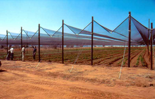 shade net greenhouse structure
