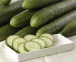 english cucumbers greenhouse hydroponics