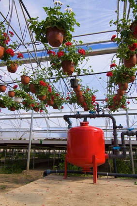 fertigation nutrient seedling nursery hydroponic