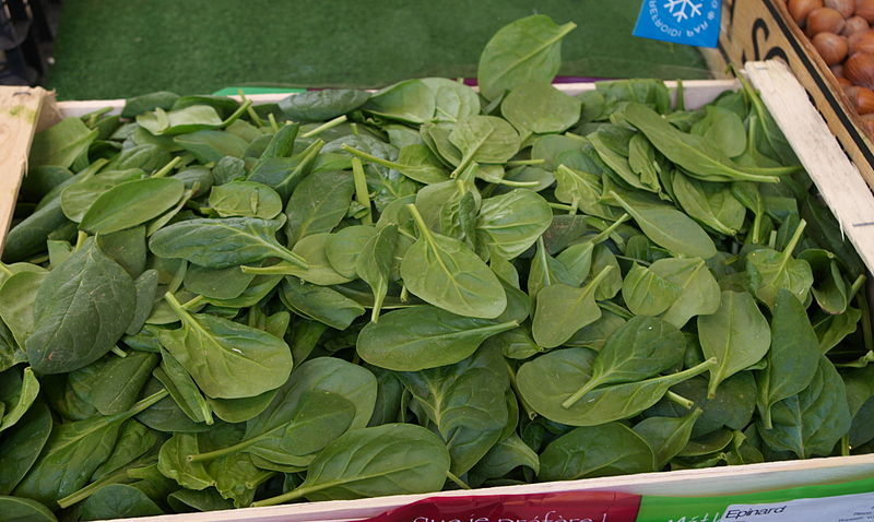 Commercial Hydroponic Farming How To Grow Spinach